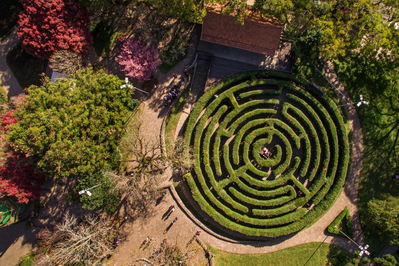 Labirinto Verde 1